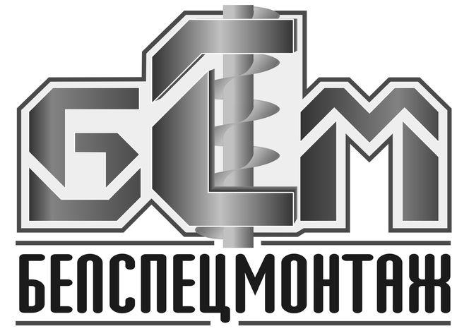 Логотип БСМ.jpg